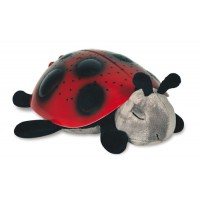 COCCINELLE LUMINEUSE PITIPA